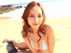 胡蝶蘭 - 池田夏希
